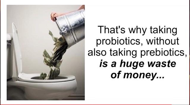 补充益生菌而不补充益生元就是浪费金钱!